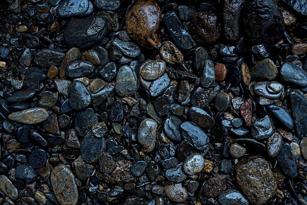 gray and black stones on water