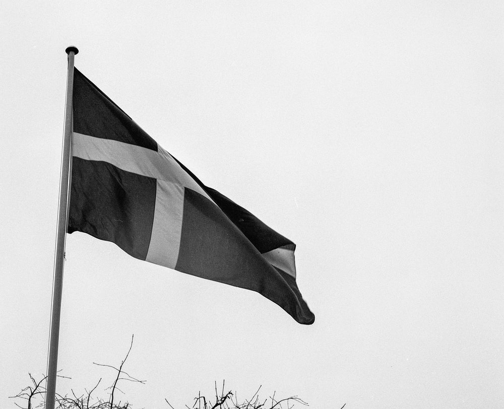 grayscale photo of flag on pole