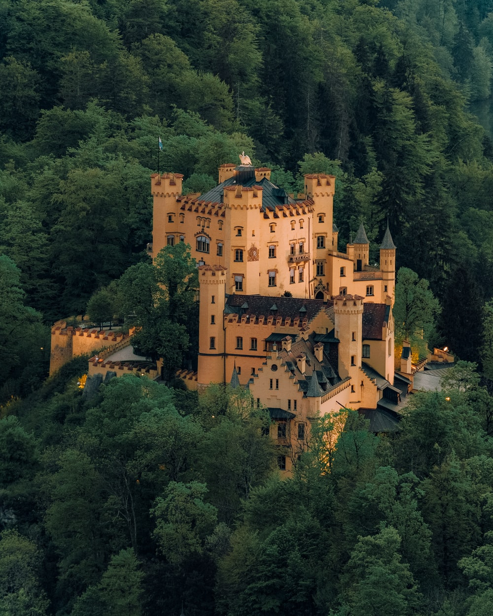 brown concrete castle surrounded by green trees during daytime