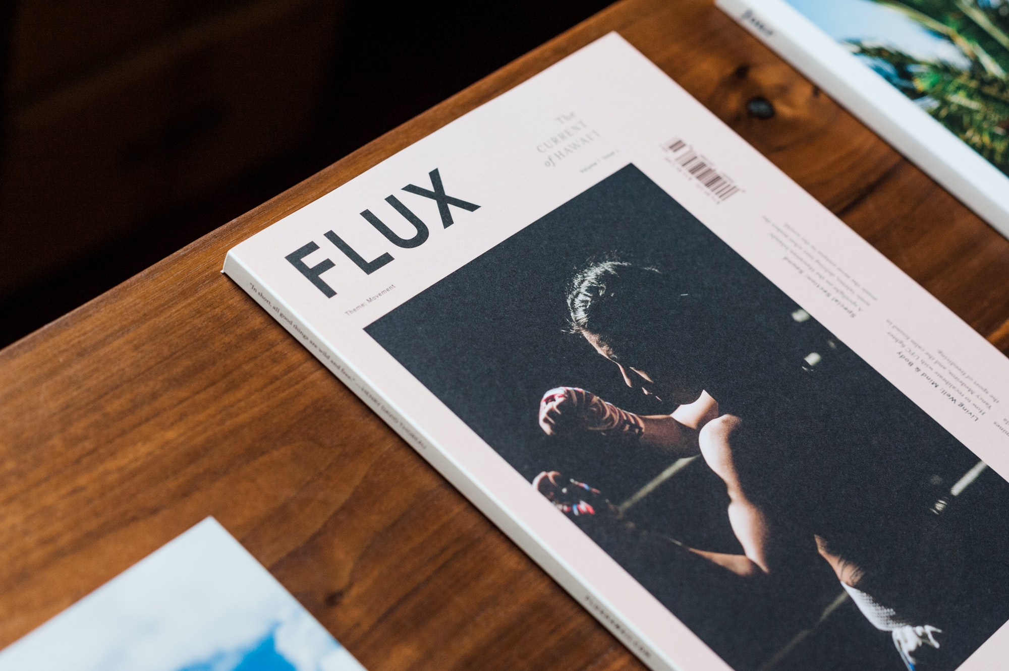 Flux Machine Learning for Julia