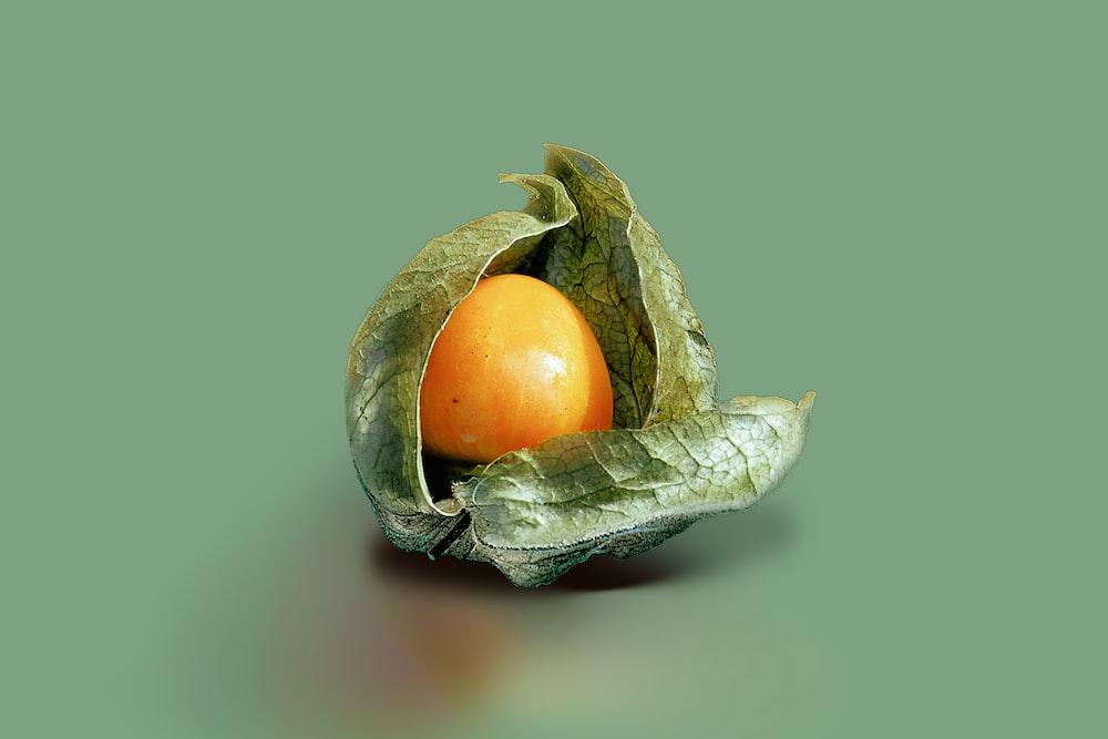 orange fruit on green leaf