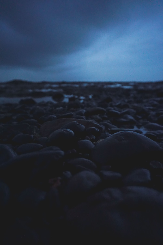 black rocks on the beach during daytime
