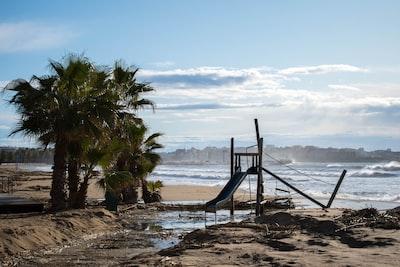 brown wooden ladder on beach shore during daytime toboggan zoom background