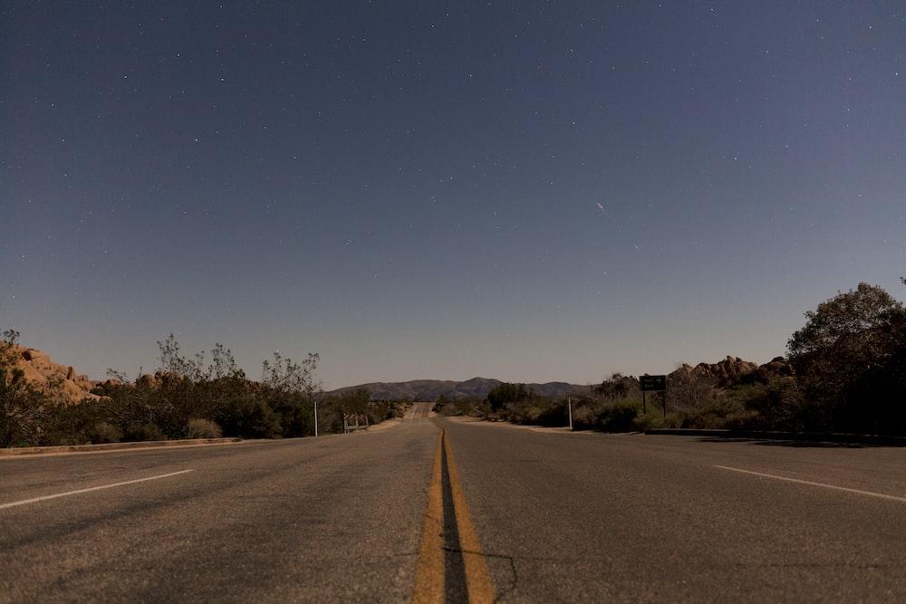 gray asphalt road between green trees under blue sky during daytime