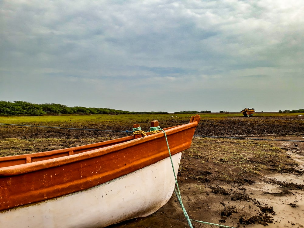 white and brown boat on brown sand during daytime