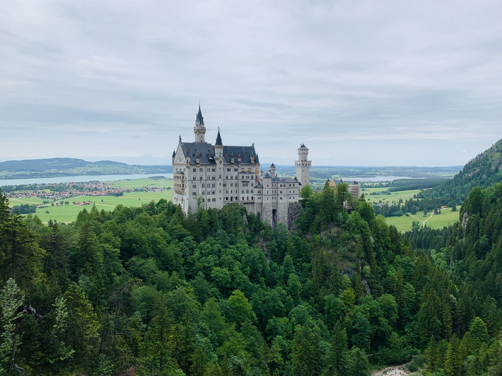 white and gray castle on green forest during daytime