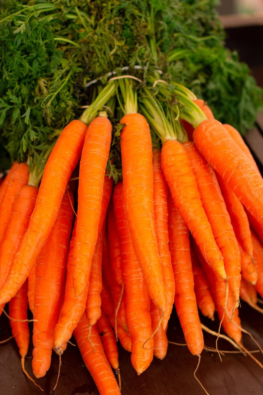orange carrots on green grass