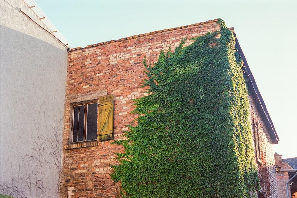 green grass near brown brick house