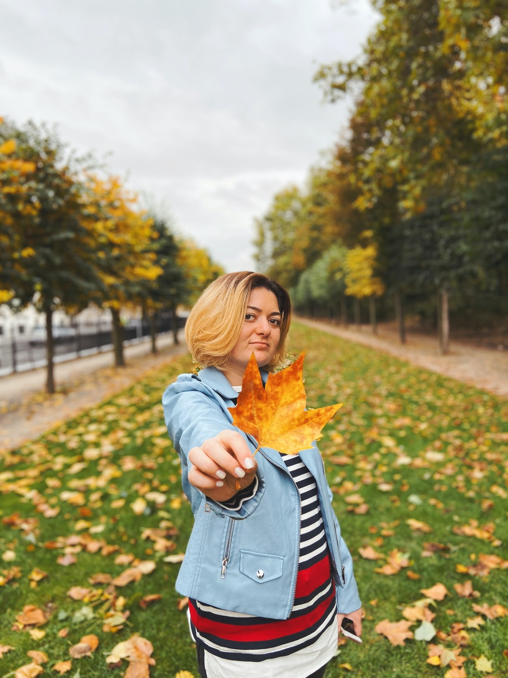woman in blue denim jacket holding yellow maple leaf