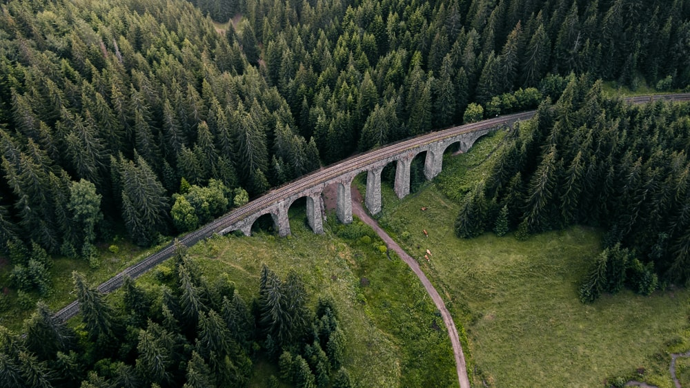 gray concrete bridge on green grass field
