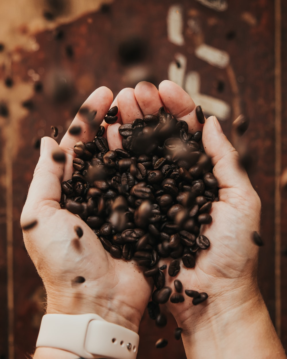 person holding coffee beans in grayscale photography