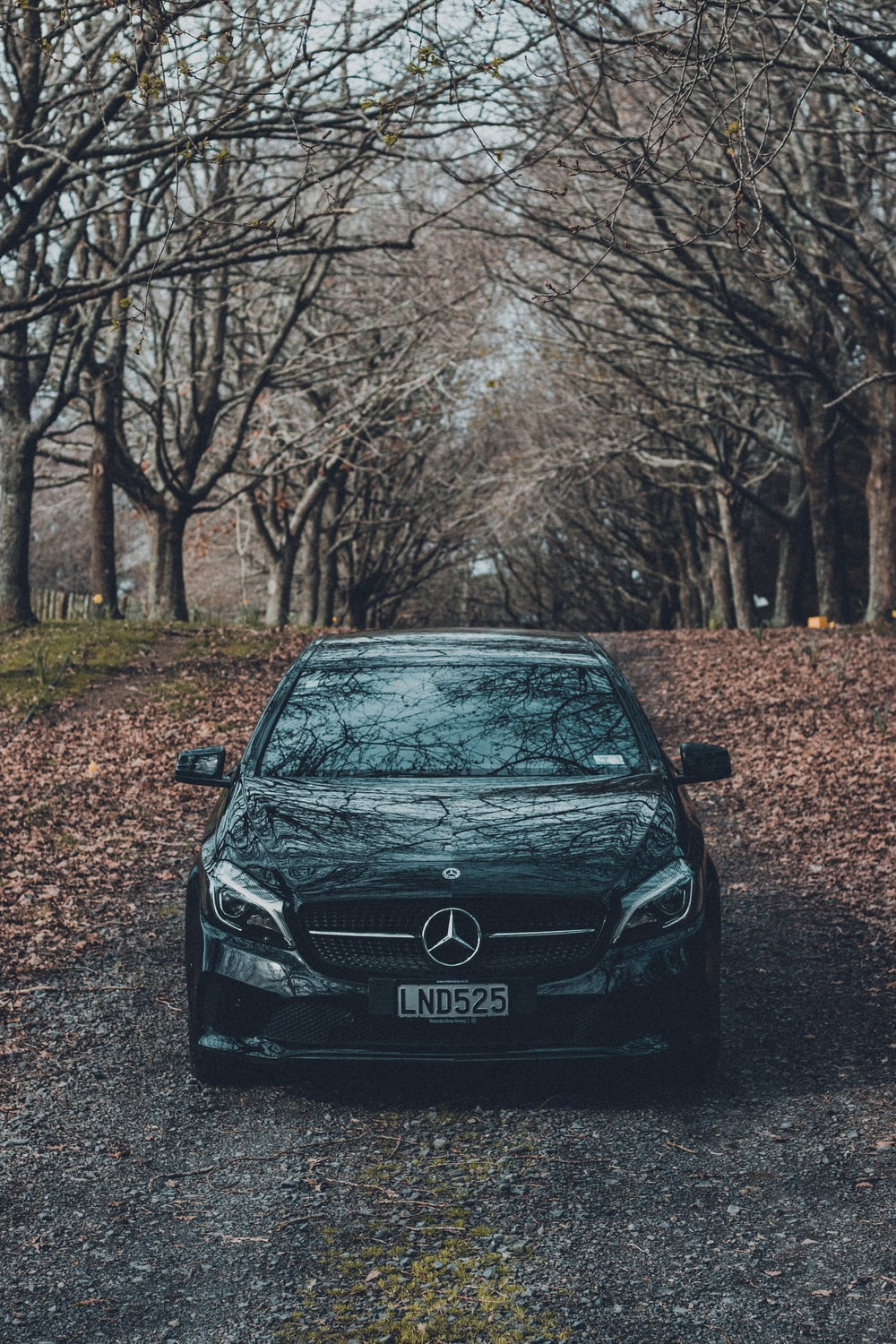 black mercedes benz car parked on brown dirt road near brown bare trees during daytime