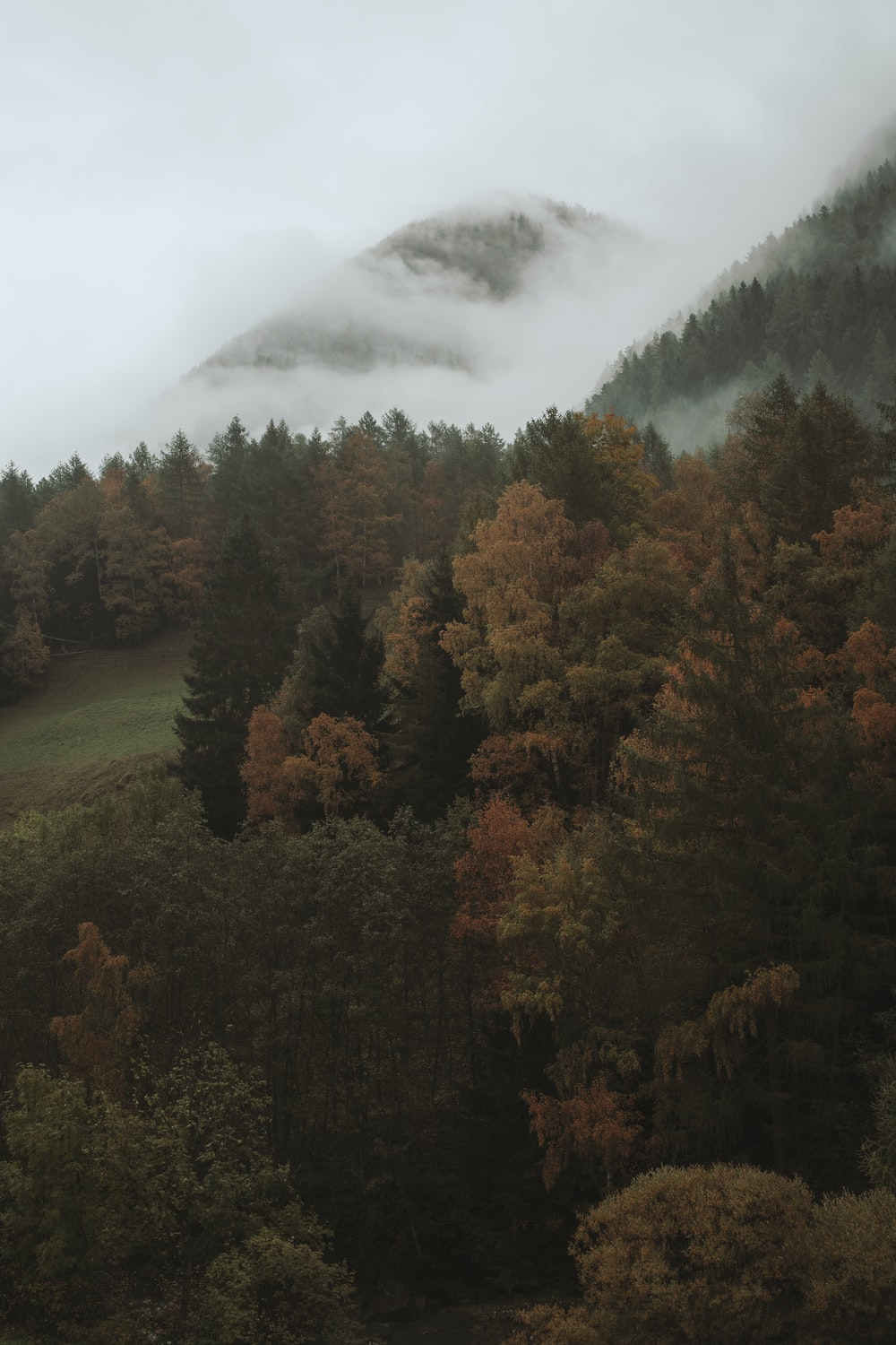 green and brown trees near mountain under white clouds during daytime