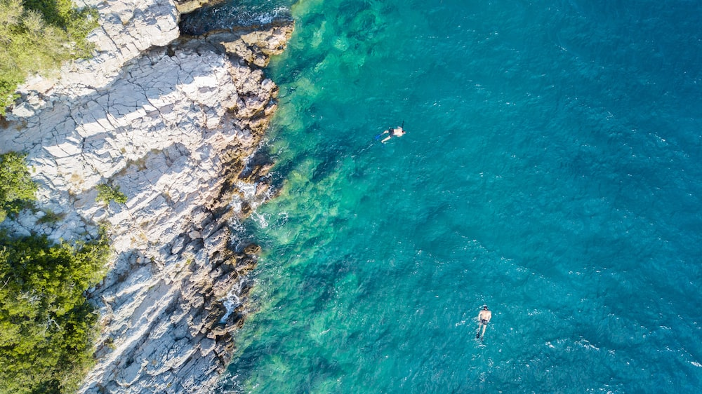 aerial view of people swimming on sea during daytime