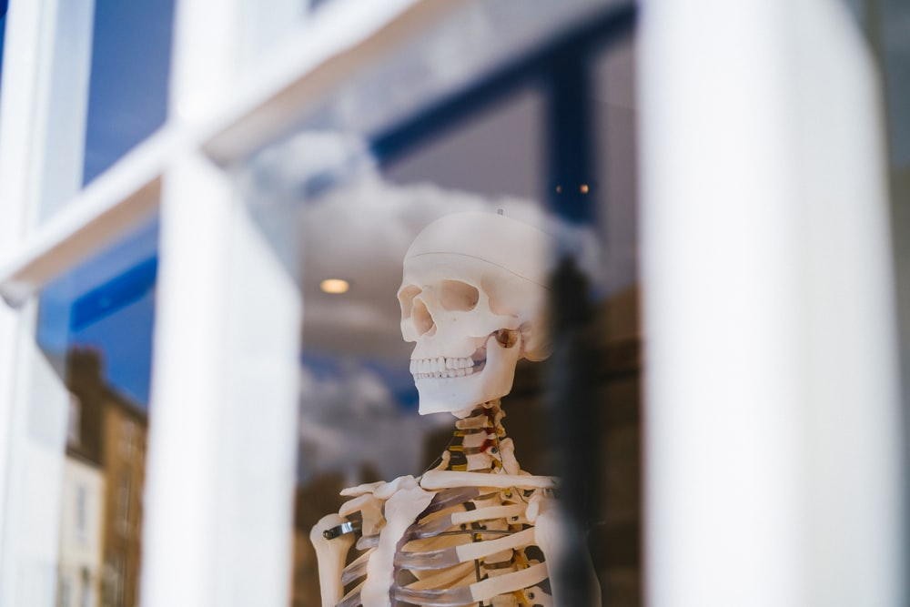 white skeleton figurine in tilt shift lens