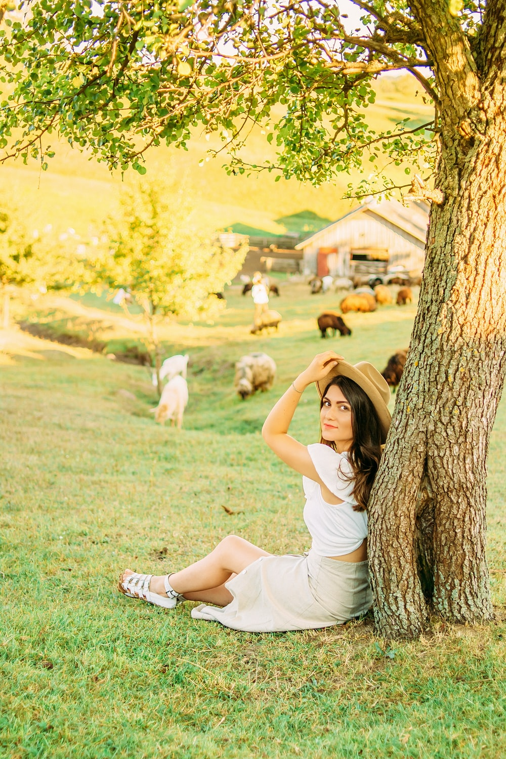 woman in white dress lying on green grass field beside brown and white short coated small