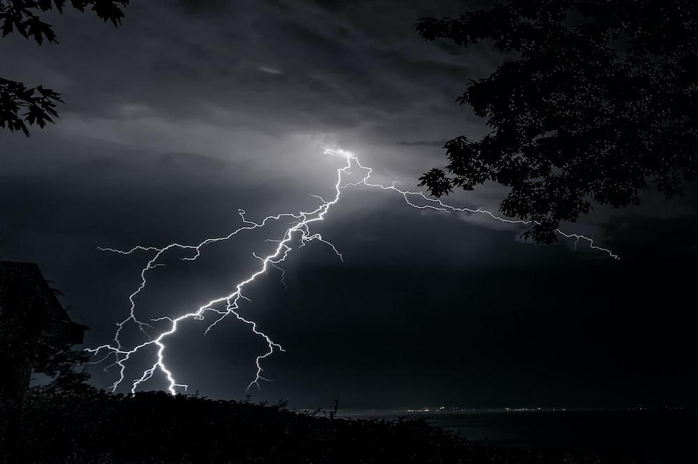lightning strike on trees during night time