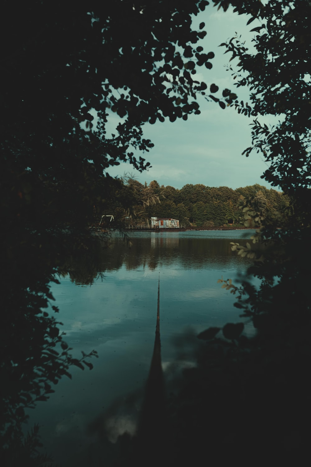body of water near trees during daytime