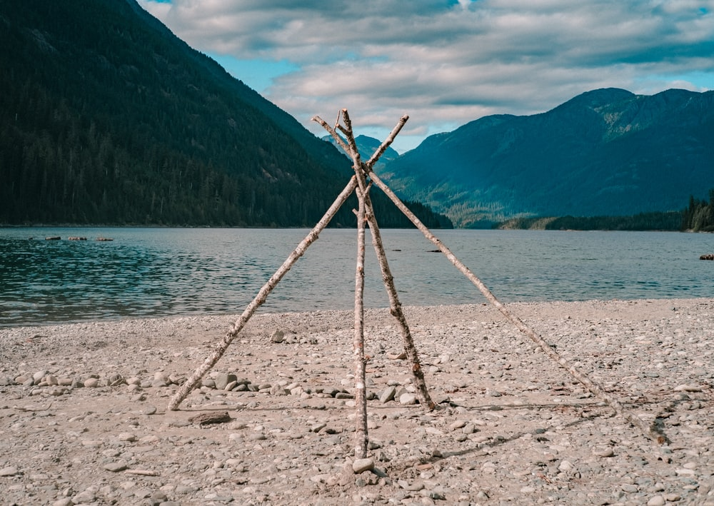 brown wooden stick on white sand near body of water during daytime