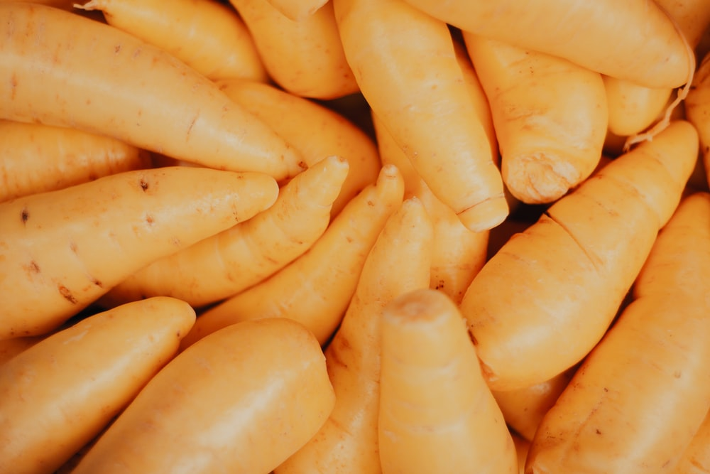 close up photo of yellow corn