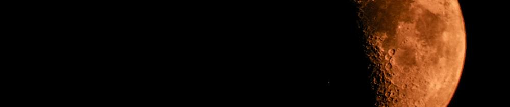 BLUECHIPS Token header image