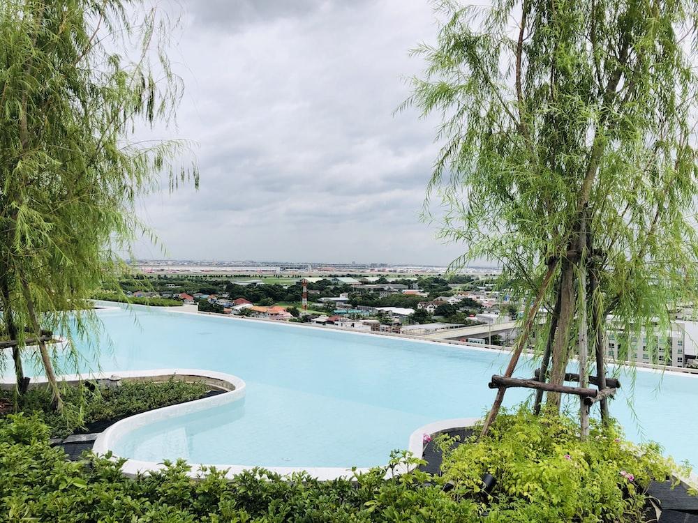 white swimming pool near green trees during daytime