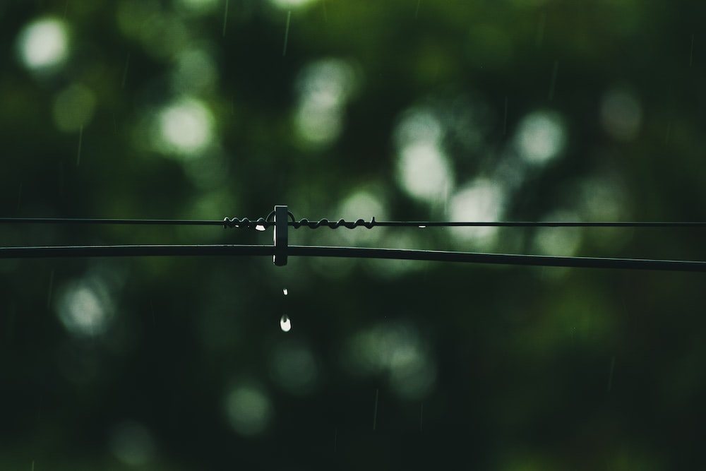 water droplets on black wire