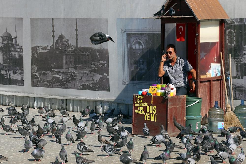 man in black leather jacket standing beside flock of birds