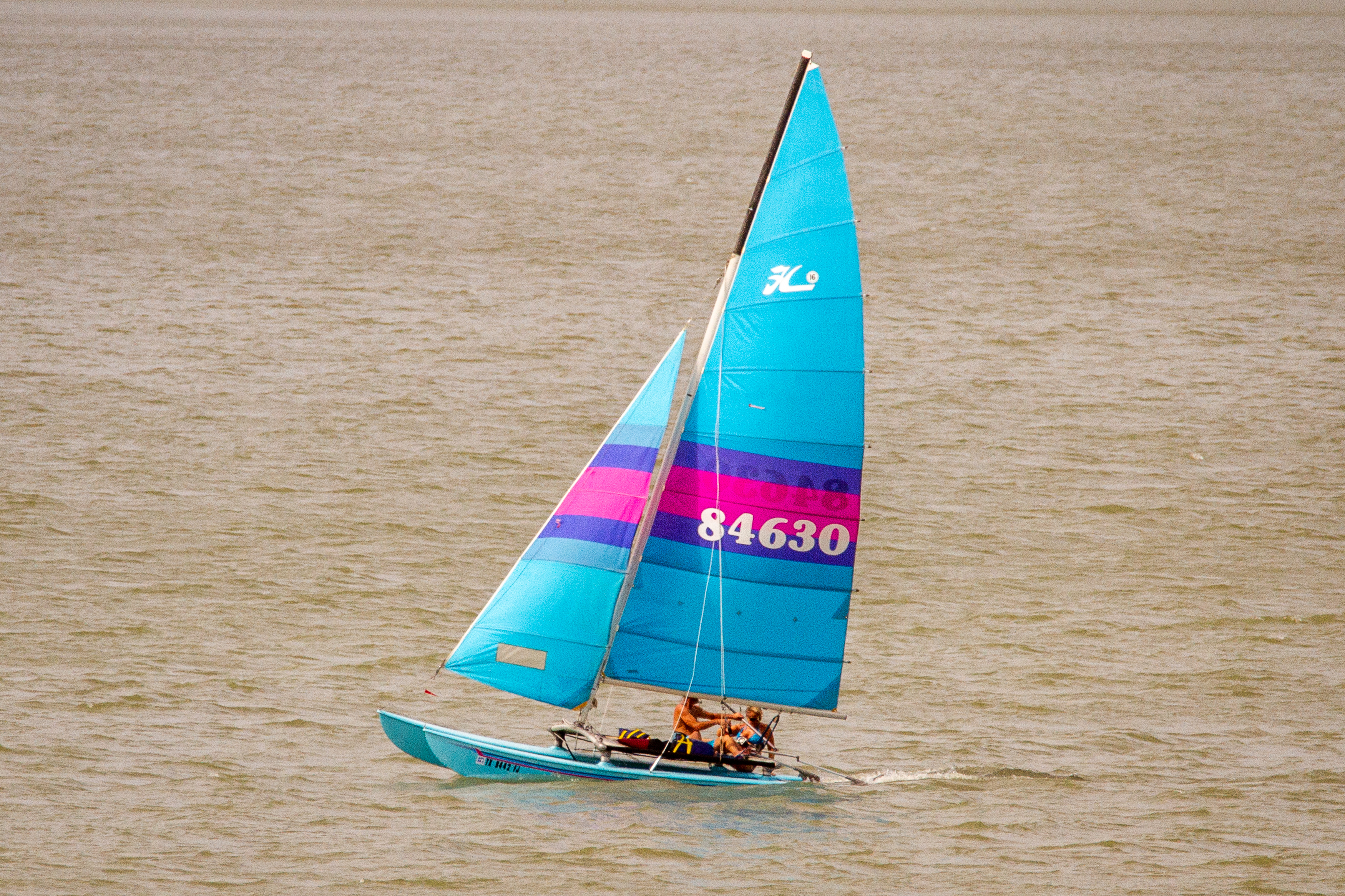 A hobie cat sails along Lake Corpus Christi.
