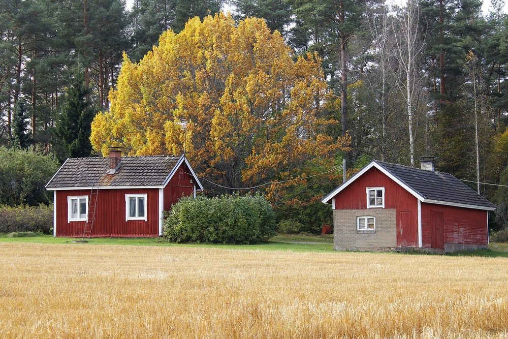 red and white barn house near yellow leaf trees during daytime