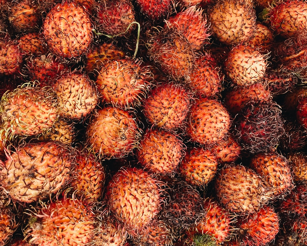 red and brown fruit lot