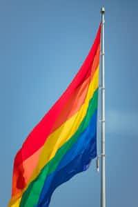 Pride  pride stories