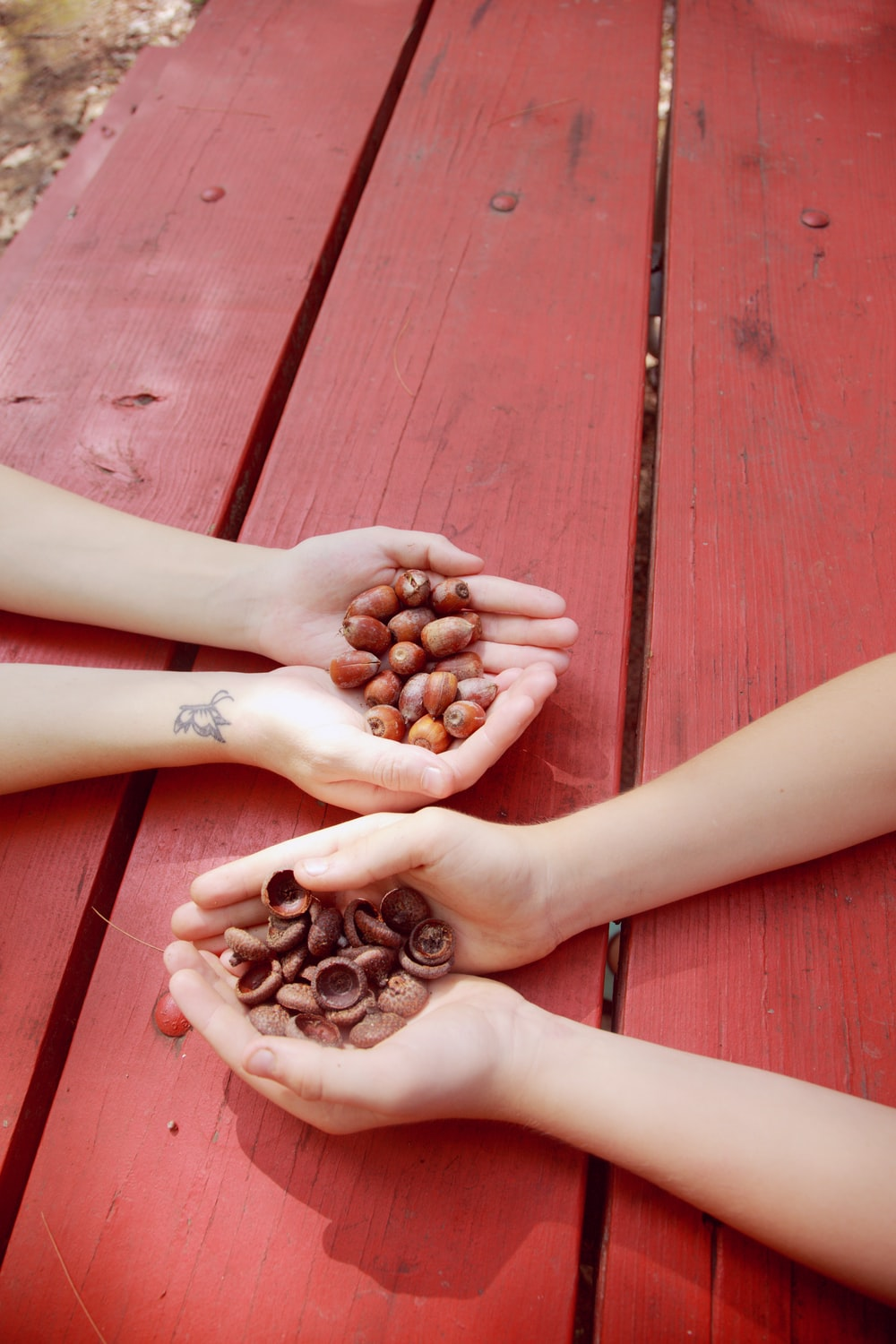 person with brown coffee beans on hands