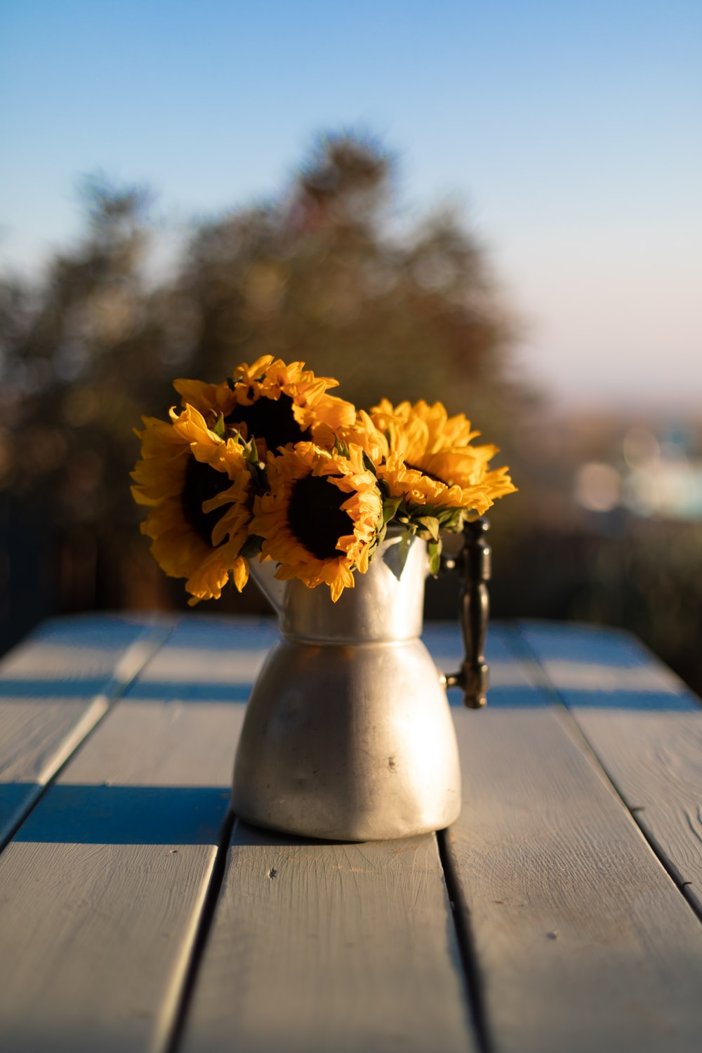yellow flower in white vase on brown wooden table