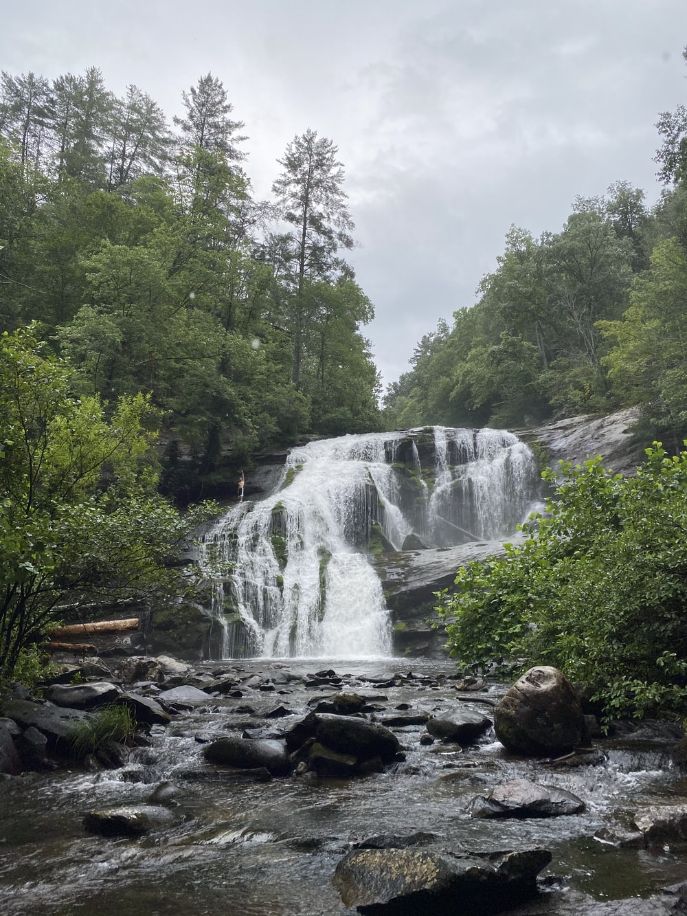 waterfalls in the middle of green trees during daytime