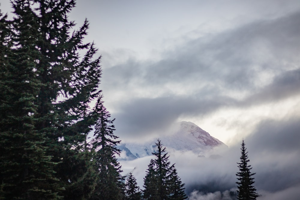 green trees near snow covered mountain under cloudy sky during daytime