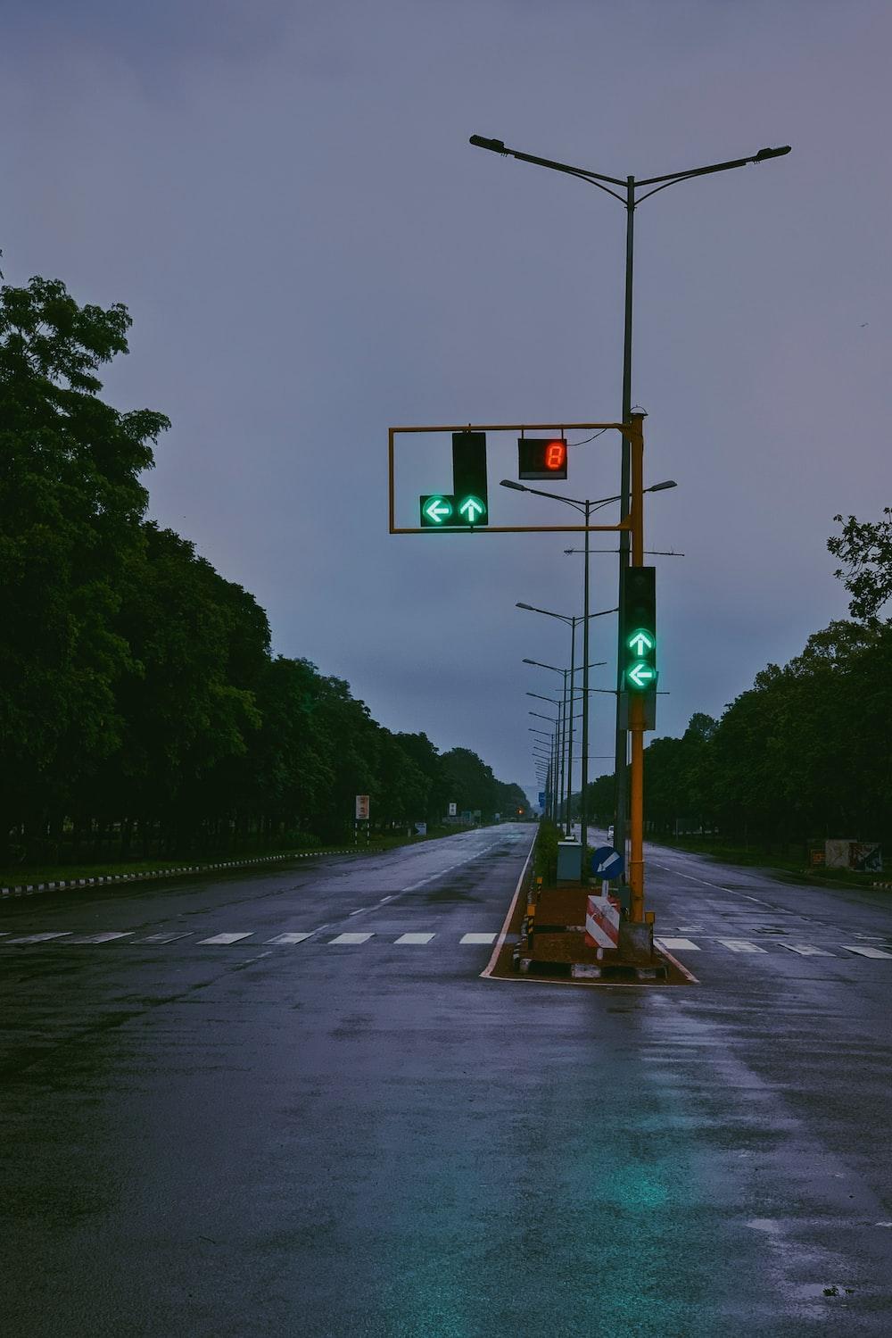 green traffic light on gray asphalt road
