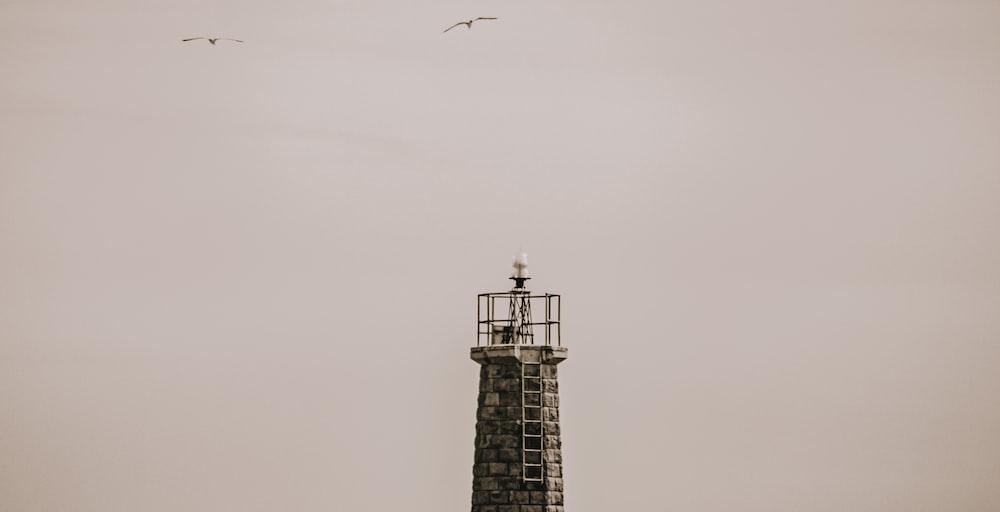 black and white lighthouse under white sky