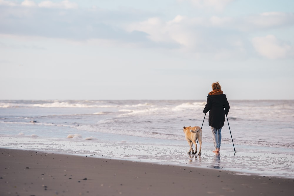 woman in black jacket walking with dog on beach during daytime