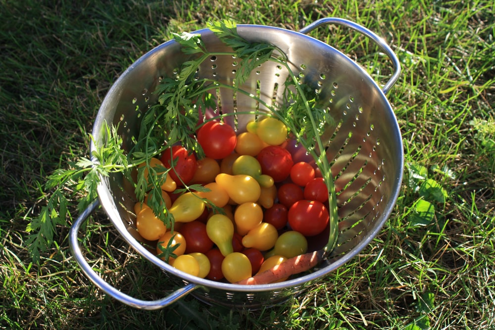 red and yellow round fruits in stainless steel bowl