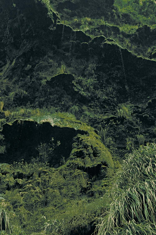 green moss on black rock