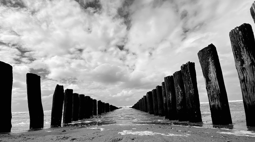 grayscale photo of wooden fence under cloudy sky