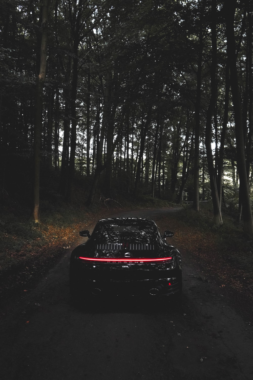 black car on forest during daytime
