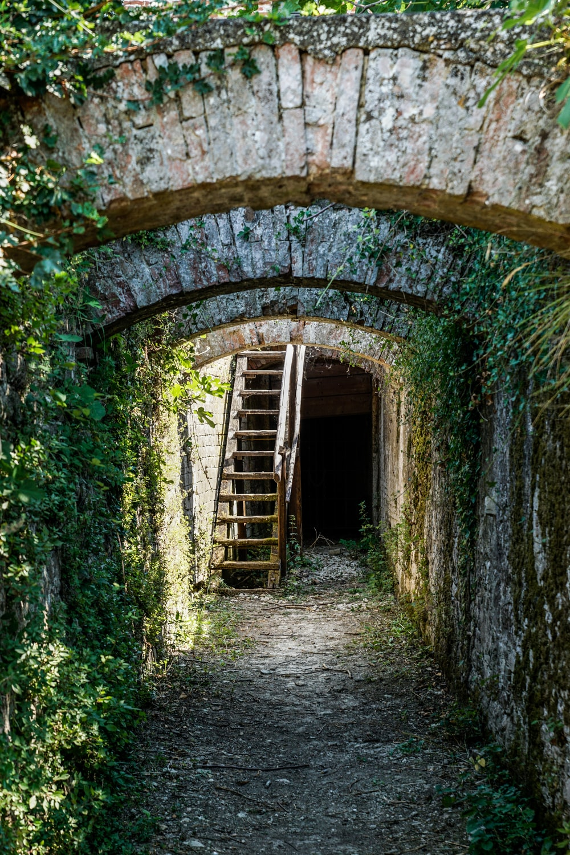 brown wooden ladder on tunnel