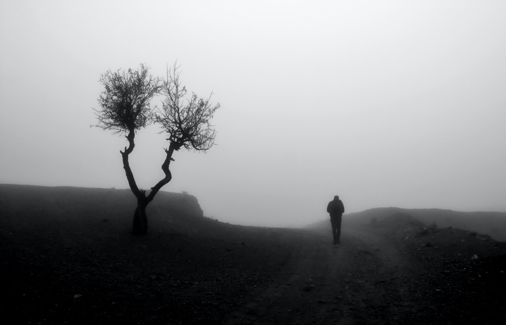 man standing on a foggy hill