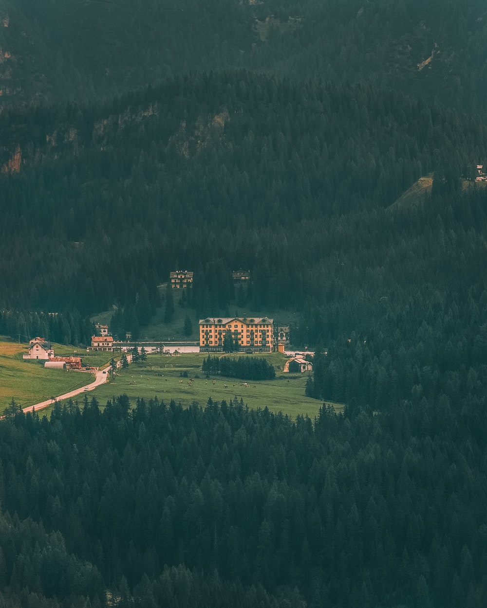 aerial view of green trees and brown house during daytime