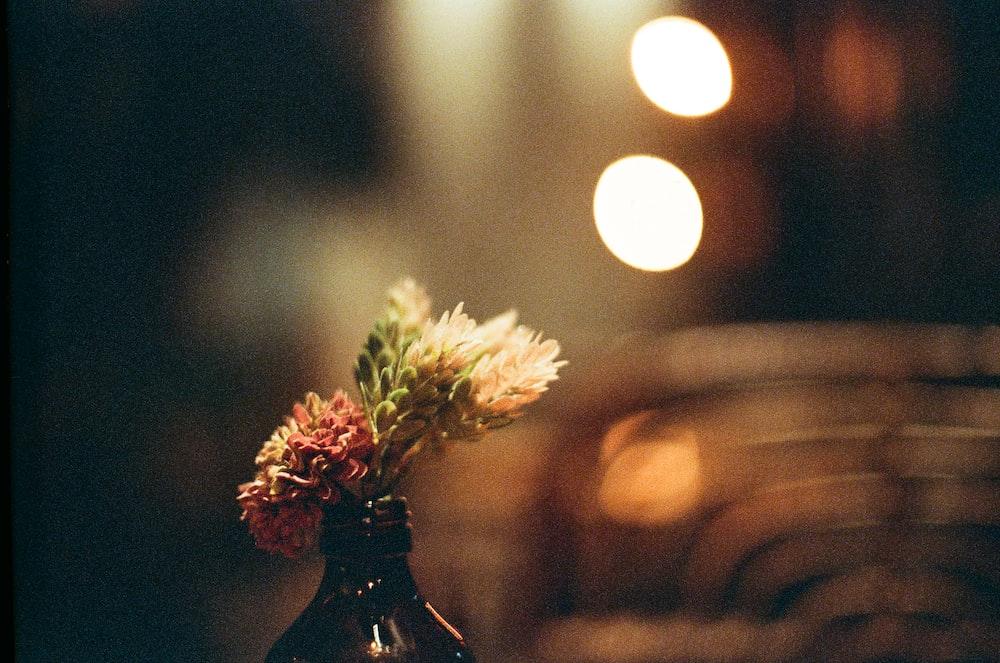 white flower on black glass vase
