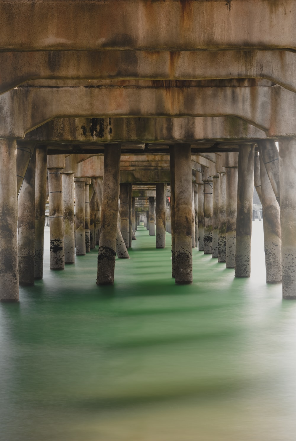 brown concrete posts on green water