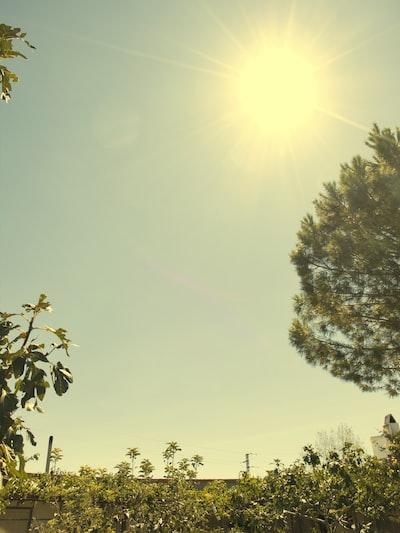The sun at noon