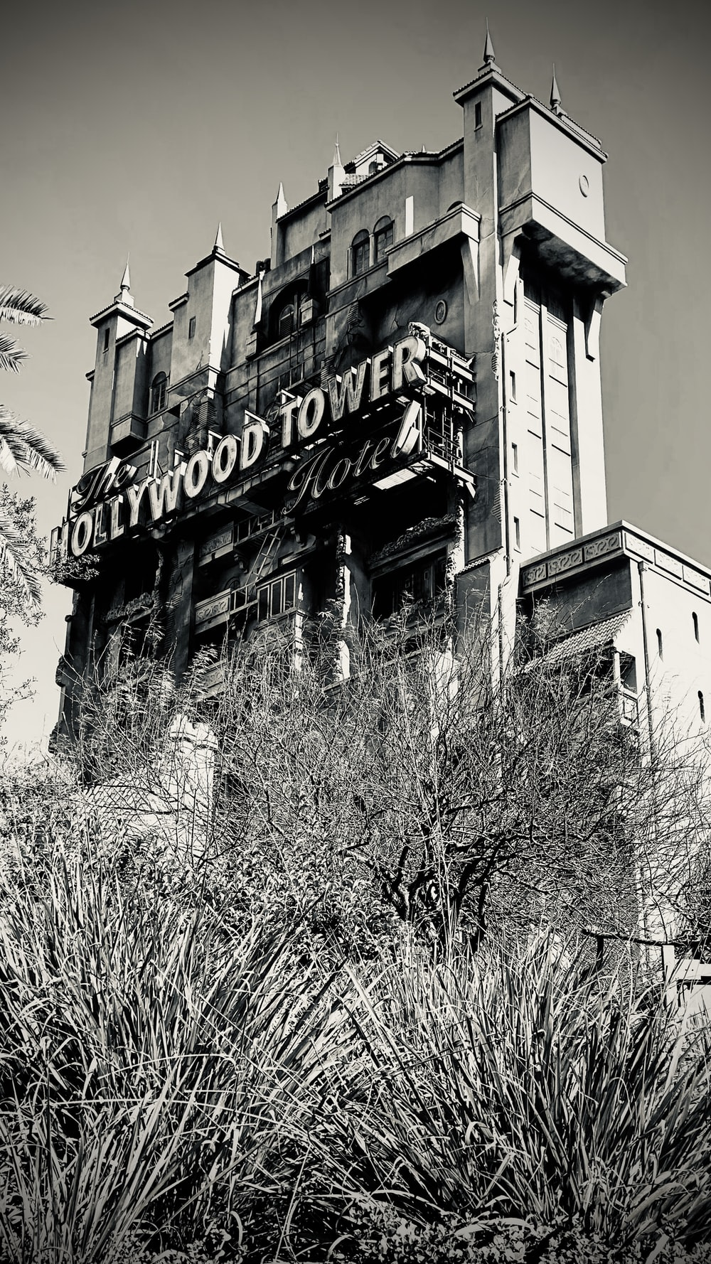 gray scale photo of hollywood building